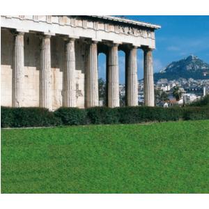 Φυσικός χλοοτάπιτας  Αθηνά Φυσικός Φυτώρια - e-fytonet.gr