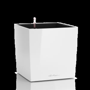 Γλάστρα αυτοποτιζόμενη Cube